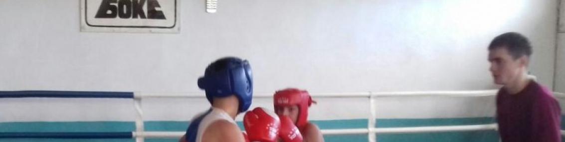 """Первенство ДЮСШ """"САМУР"""" по боксу"""